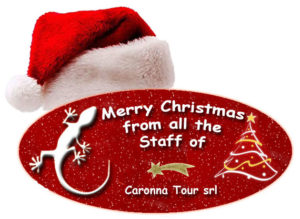 Best wishes for a Merry Christmas and Happy New Year
