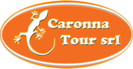 Caronna Tour srl